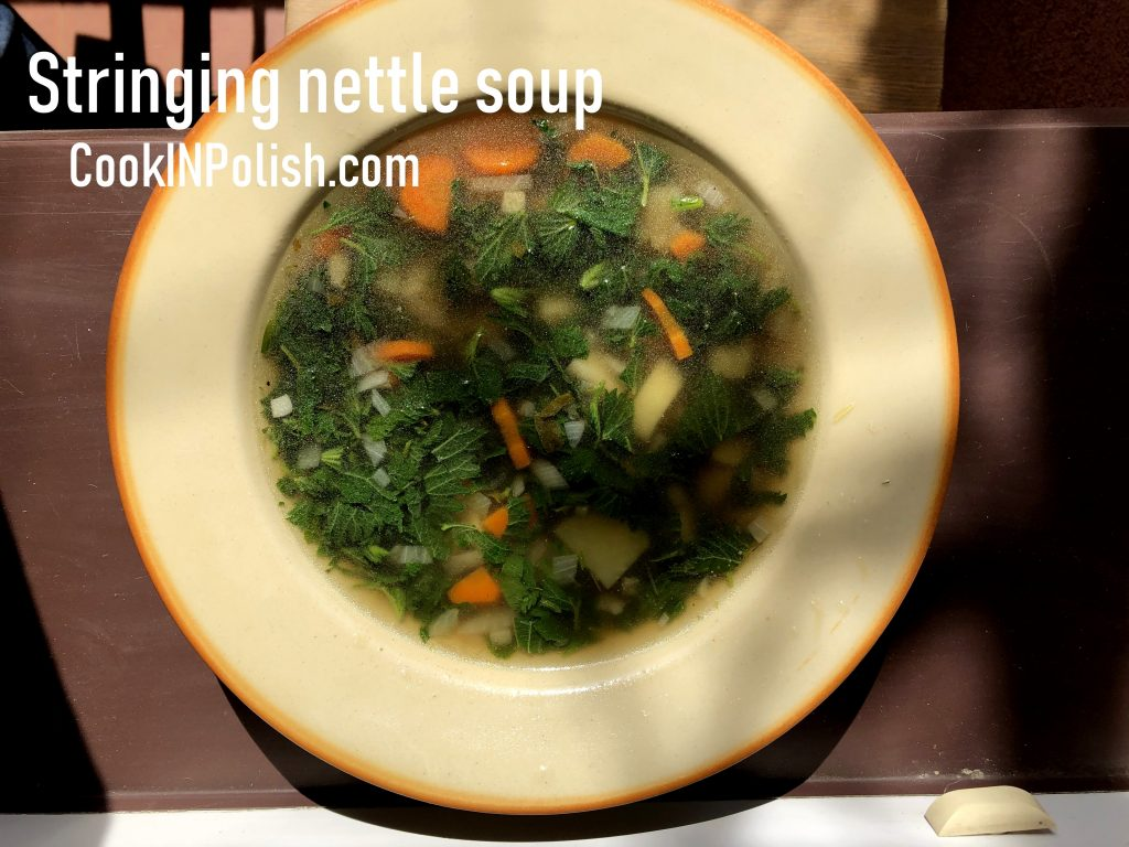 Stinging nettle soup served in the plate