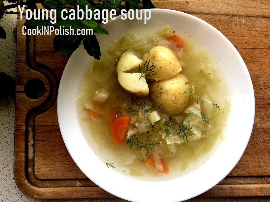 young cabbage soup on the plate