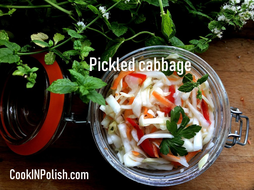 Quick pickled cabbage in the jar
