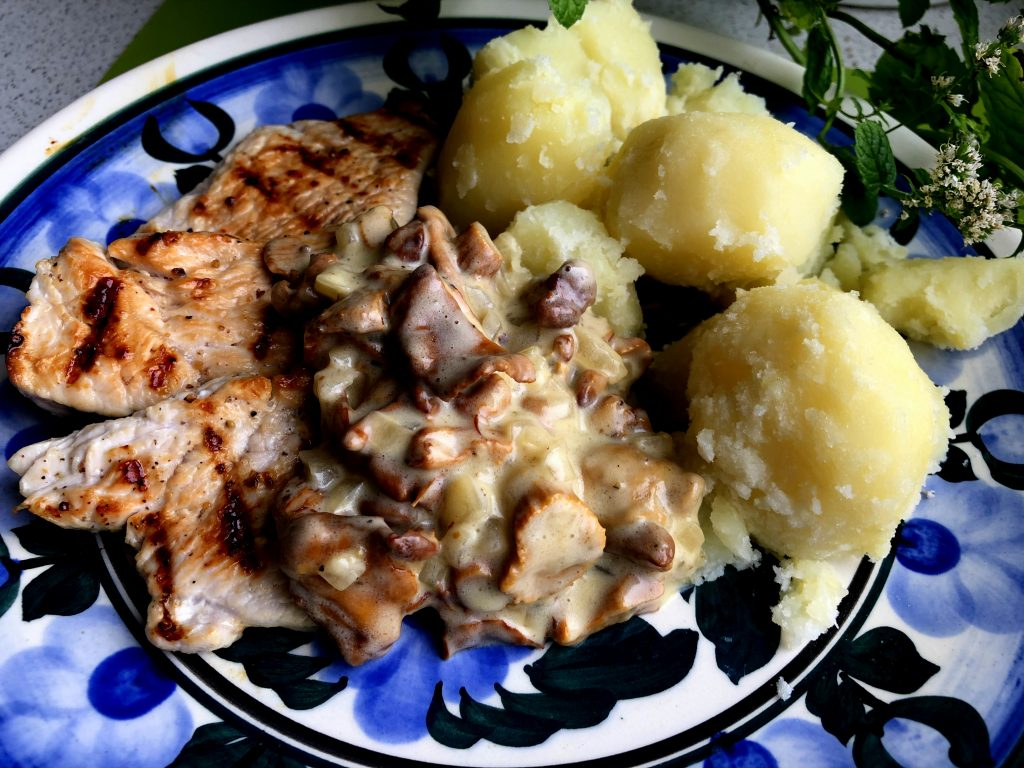 Chanterelles cream sauce with potatoes and grilled turkey breast on the folk plate